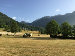 Pyrenees - 160 of 178