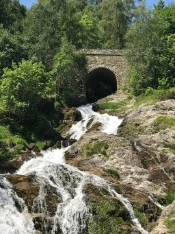 Pyrenees - 39 of 178
